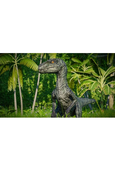 Jurassic World Evolution: Raptor Squad Skin Collection (DLC)