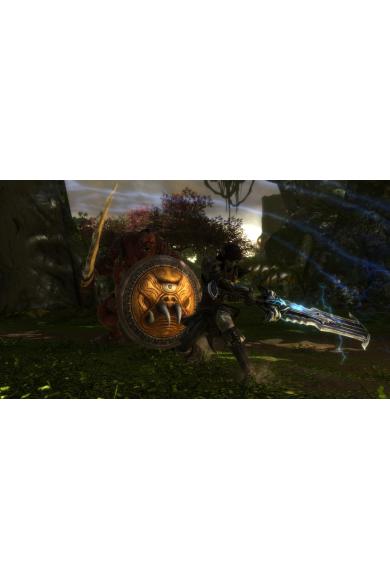Kingdoms of Amalur: Re-Reckoning (USA) (Xbox One)