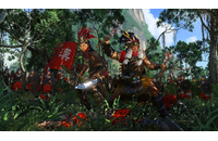 Total War: THREE KINGDOMS - The Furious Wild (DLC)