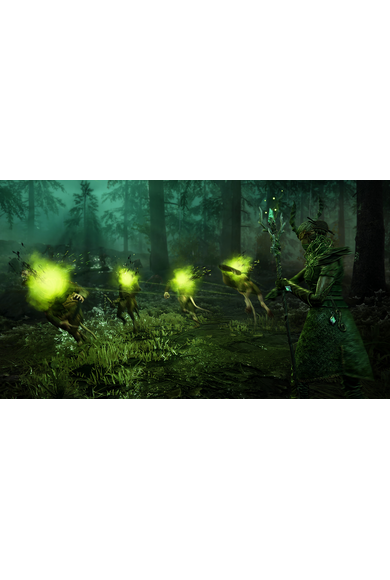 Warhammer: Vermintide 2 - Sister of the Thorn (DLC)