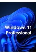 Windows 11 Professional OEM