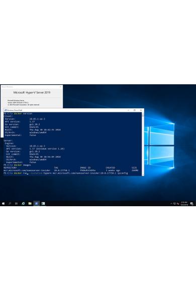 Windows Server 2019 (Standard)